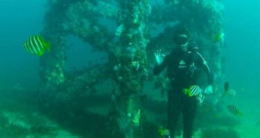 James Florisson diving on the artificial reef . Credit: Recfishwest