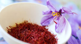 Saffron spices up mental health research